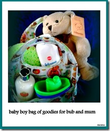 baby boy bag of goodies for bub and mum no.45 22-10-2014 9-34-16 AM.17