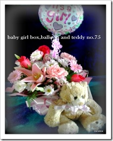 baby girl box,balloon and teddy bear .no.75 3-11-2014 12-53-061