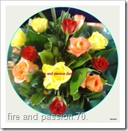 1-fire and passion.70daralea.box 22-01-2015 10-26-57 AM.57